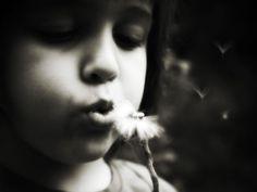 Blow, photography by Deborah Parkin