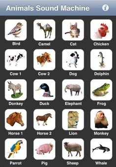 10 iphone apps for toddlers - tested and approved! Toddler Apps, Toddler Fun, Toddler Crafts, Toddler Stuff, Kid Stuff, Craft Activities For Kids, Crafts For Kids, Honey Chicken Kabobs, Raising Boys