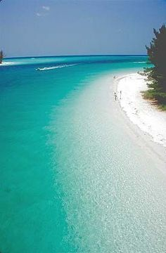 Anna Maria Island, Florida....Cleanest, clearest waters I've ever seen!! Going on my list of favorite beaches!