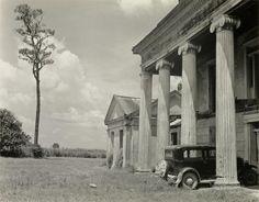 Edward Weston: Woodlawn Plantation. Assumption Parish, Louisiana. 1941