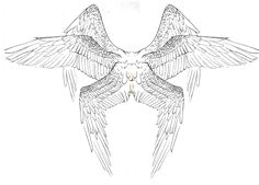 Wing inspiration Seraph Tattoo Design by 7GreenRobin7