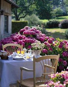 Ana Rosa: Surrounded by stunning  hydrangeas for a peaceful dinner.  I like the thought of that.