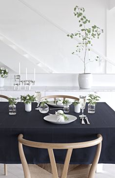 Table setting – Constitution day
