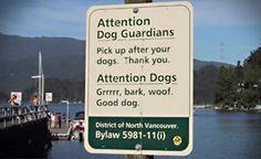 Schild für Hunde Bild - lustich.de