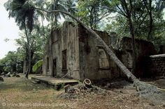 French Guiana - Devil's Islands, Ile St. Joseph, prison ruins