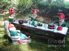 Gnome Cooking © Richard Brookes