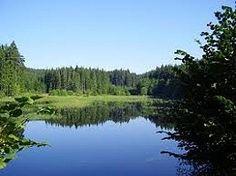 Ekosystém rybník - hry a prezentace Pond Life, Biology, River, Mountains, Nature, Outdoor, Outdoors, Naturaleza, Nature Illustration