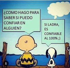 #amigo