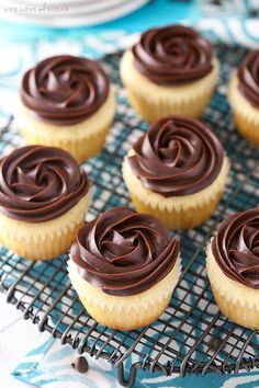 These Boston Cream Pie Cupcakes are to die for! Moist vanilla cake, pastry cream filling and a beautiful chocolate ganache topping make this one tasty cupcake you'll definitely want to sink your teeth into. Boston Cream Pie Cupcakes, Cream Filled Cupcakes, Mocha Cupcakes, Velvet Cupcakes, Cupcake Recipes, Cupcake Cakes, Dessert Recipes, Cupcake Frosting, Lemon Desserts