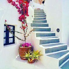 Ομορφιές του νησιού!!!! Φώτο:@travelmyday #tinos_island #Τήνος #visittinos #cyclades_islands #visitgreece #wu_greece #greecelover #greekislands #travelingreece #igers_greece #ig_cyclades #stairs Greece, Stairs, Island, Instagram Posts, Home Decor, Greece Country, Stairway, Decoration Home, Room Decor