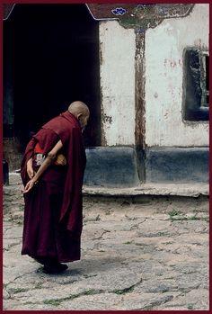 Tibet: Elderly Monk