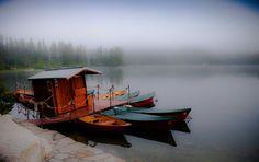 foggy // by @picsart artist @kszysztofor1972