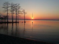 North Landing Campground > Virginia Beach,Virginia. Photo by Nancy Barco