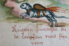 medieval rocket cat