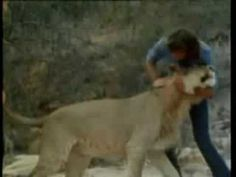Love this video...Christian the Lion. Oh that actual video, so cute! http://www.lshf.org/