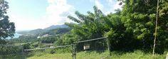 Maunabo desde camino nuevo...