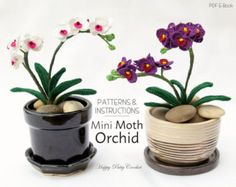 Mini Crochet Orchid Pattern - Crochet Flower Decoration - Easy Crochet Flower Pattern - Moth Orchid Flower Pattern - Instant Download