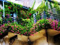 petit balcon décoré avec des fleurs