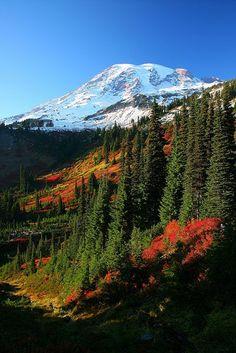 Mt Rainier National Park; photo by Jeremy Jonkman