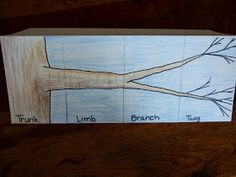 The queen of foldables, Dinah Zike, suggested this foldable in her Big Book of Science.  I hand drew the image based on her example.  Jus...