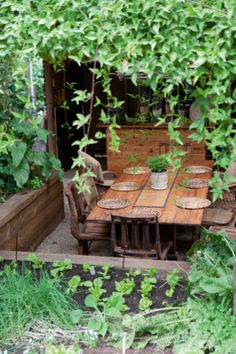 Vegetables and vines surround the hothouse dining area.