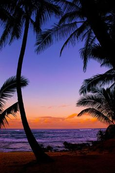 """This is how I imagine sunset in San Loretta Island appears. (Silhouetted palm trees - tropical beach sunset - Maui (by IronRodArt - Royce Bair (""""Star Shooter"""")) Beautiful Sunset, Beautiful Beaches, Beautiful Scenery, Animals Beautiful, Beautiful Pictures, Dream Vacations, Vacation Spots, Places To Travel, Places To See"""
