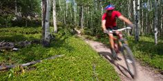 Descending on the Mule Deer Loop in Golden Gate Canyon State Park.- Colorado's…