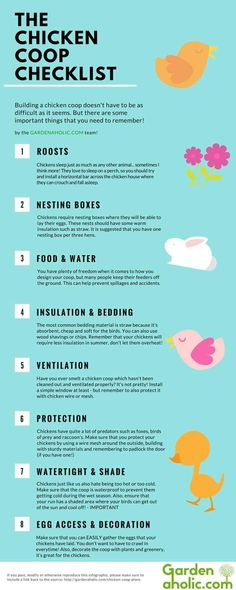 Planning Your Chicken Coop | Simple DIY Tips for a Happy Chickens | Livestock…