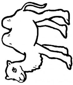 Camel coloring pages Camel ideas Pinterest Camels
