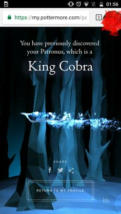 Random thought: I'm a Ravenclaw and I have a King Cobra Patronus. Any comments? I'm rather curious.