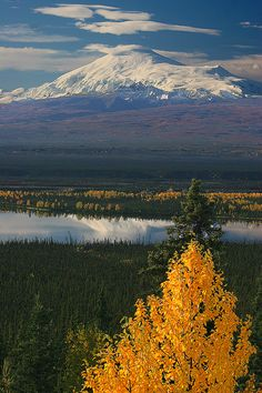 Mt Sanford, Wrangell-St Elias National Park and Preserve, Alaska