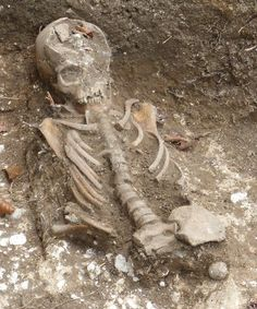 This is a young child's skeleton all cleaned up and recorded, just prior to removal Crib, Medieval, Lion Sculpture, Statue, Crib Bedding, Baby Crib, Mid Century, Cribs