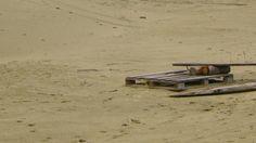 Березовские пески, или пустыня выходного дня в окрестностях Екатеринбурга.
