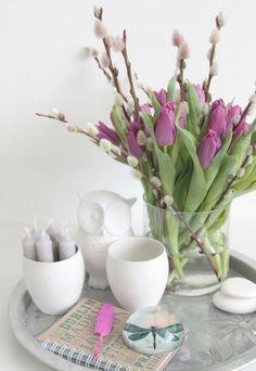 красивые договоренности тюльпана