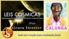 As Leis do Universo   5ª Lei    Tudo tem função  com meditação final Cal...