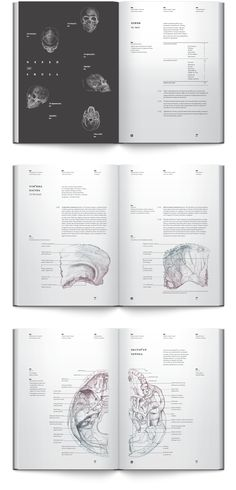 Good example of a book layout. Has a bleeding graphic of skull. Osteology by Irene Shkarovska, via Behance Book Design Layout, Print Layout, Book Cover Design, Page Design, Sketch Design, Text Layout, Brochure Layout, Corporate Brochure, Brochure Design