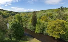 Savills | Cassillis Estate, Maybole, Ayrshire, KA19 7JN | Property for sale