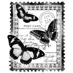 mariposa en sello postal
