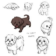 Image result for how to draw a shih-tzu images