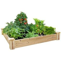 We have one of these in back for a starter garden and one up front for flowers. I want more. They are so universal.