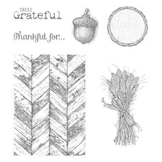 Stampin' Up! Truly Grateful Card - Mary Fish, My Fun & Chic Stampin' Up! Boutique!