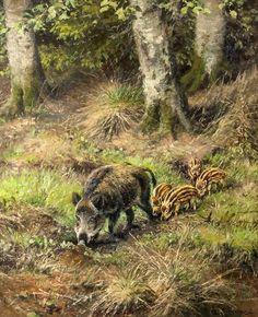 Wildlife Paintings, Wildlife Art, Animal Paintings, Animal Drawings, Pastel Paintings, Wild Boar Hunting, Hog Hunting, Hunting Art, Pig Breeds