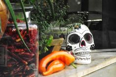 Restaurant Luz Verde, 24, rue Henry Monnier Paris 75009. Craving : Mexican . The extras : Antidepressant, Late night hunger, Group friendly.