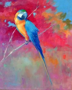 Macaw with Reds-- oil by Elizabeth Blaylock -- Find her on Dailypainters.com