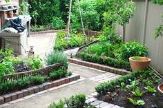 Fruit, Vegetable and Cutting Garden traditional-landscape