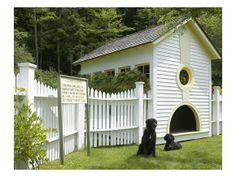 2429 Under the MountainLondonderry, Vermont 05155 cool dog house