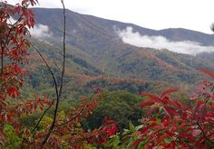 There's no place like the Smoky Mountains!