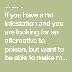 If you have a rat infestation and you are looking for an alternative to poison, but want to be able to make multiple catches, then a multi-catch rat trap is the way to go. Mole Removal Yard, Rat Infestation, Rat Traps, Poisons, Rats, Alternative, Places, Rodents, Coops