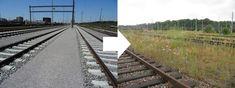 Gateway Basel Nord stellt 45.8 Hektaren Ersatzflächen bereit. Basel, Railroad Tracks, Blog, Rare Animals, Train Tracks