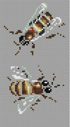 Gallery.ru / Фото #105 - Шмели, осы и цикада - YANACHILI